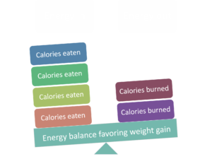 Eating more calories than you need results in weight gain
